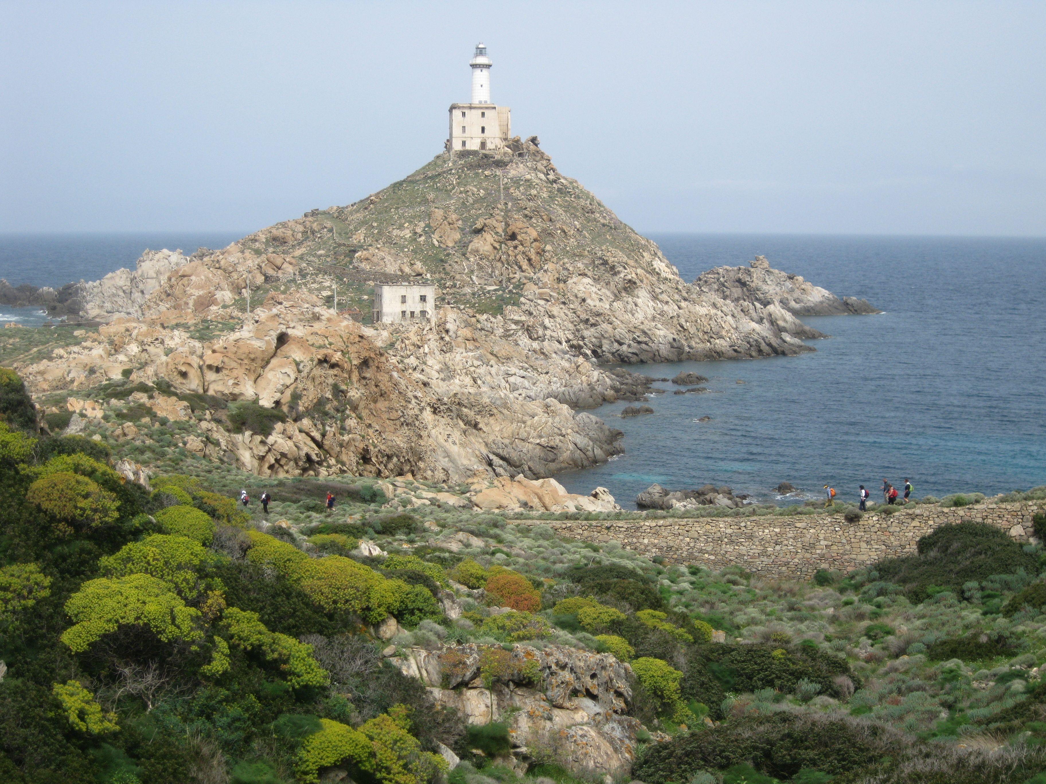 Asinara - Sardegna - Italy 2013