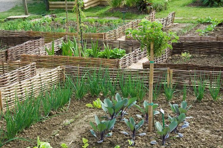 Comment Dessiner Un Jardin. Affordable Comment Dessiner Un ...