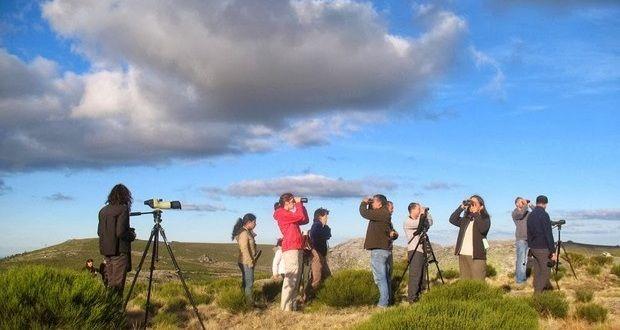 Milhares de europeus observam aves no EuroBirdwatch 2014! | Algarlife