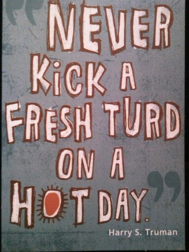 Never kick a fresh turd on a hot day - fresh invitation card quotes for freshers party
