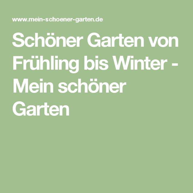 Schoner Garten Von Fruhling Bis Winter Mein Schoner Garten Rasen Erneuern Stauden Rasen