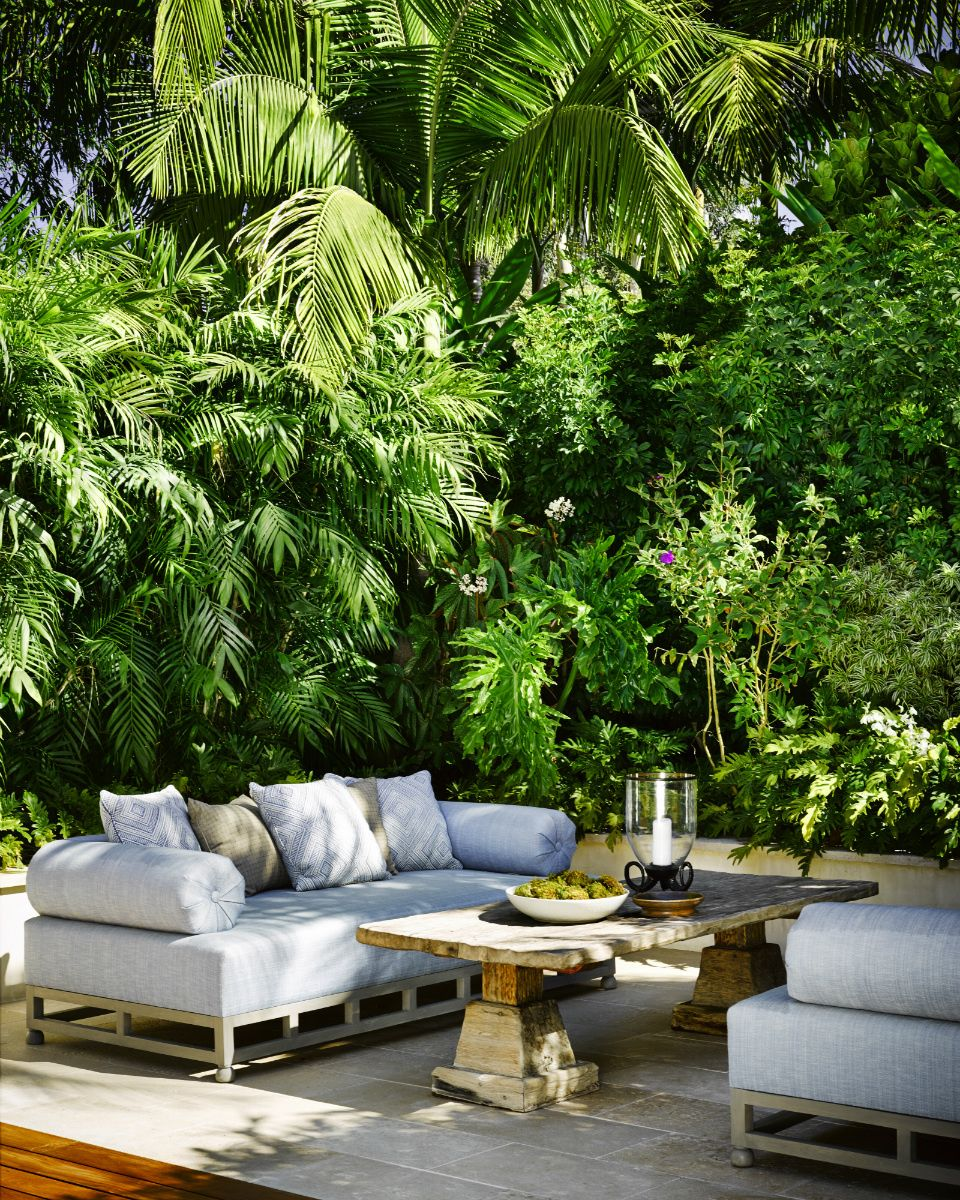Me Encanta Ese Ambiente Selv Tico Que Crean Estas Plantas  # Muebles Low Cost Castellon