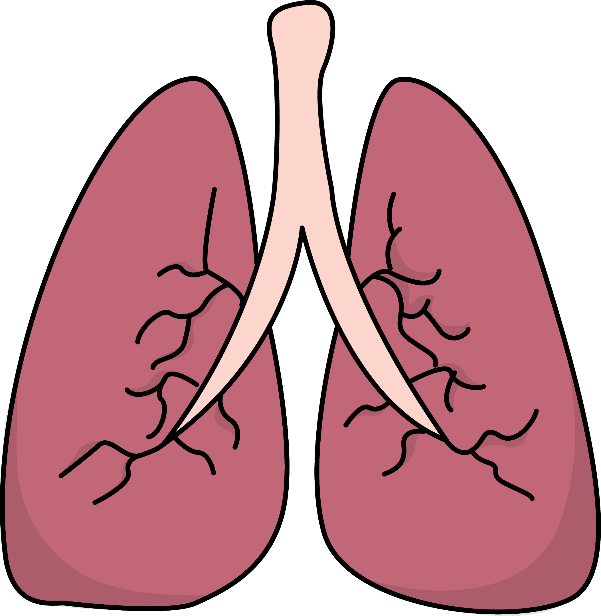 Image For Free Lungs Health High Resolution Clip Art
