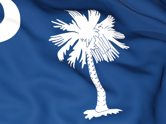 Flag Background Download Flag Icon Of South Carolina South Carolina Flag Flag Background South Carolina
