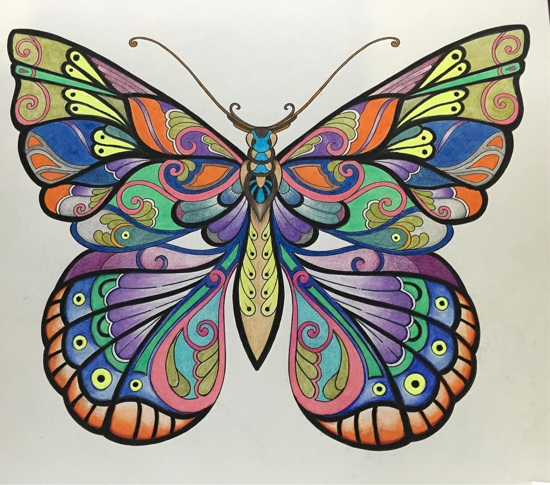 vanessa butterfly drawing images - HD1080×954