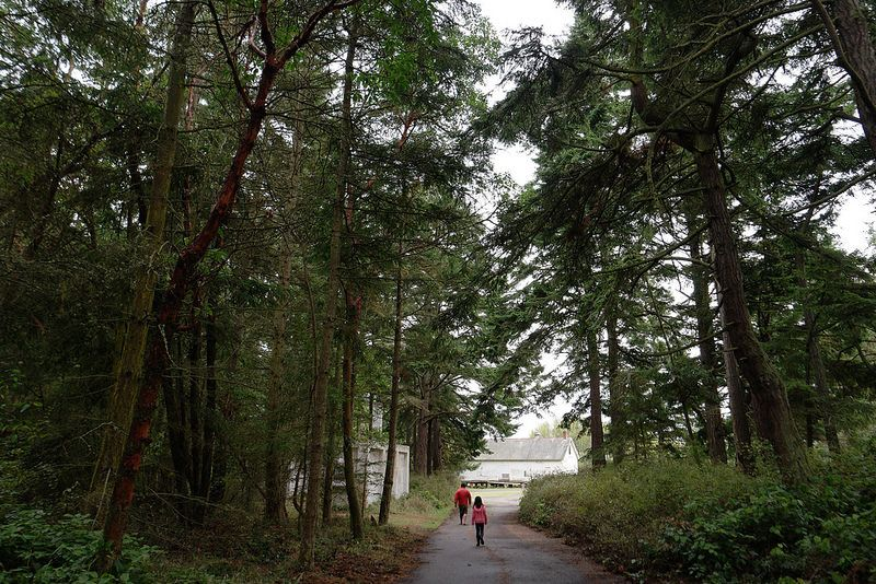 """""""The journey is just as important, if not more, than the destination."""" At Fort Worden State Park in Townsend, WA // #FamilyTrails // #FamilyTrails"""