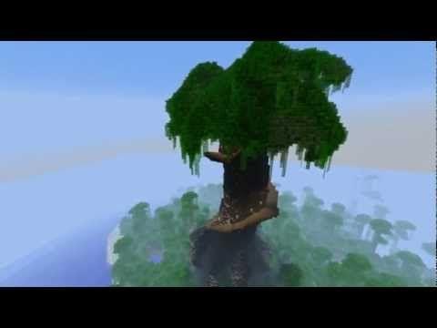 Timelapse - Giant Tree - YouTube