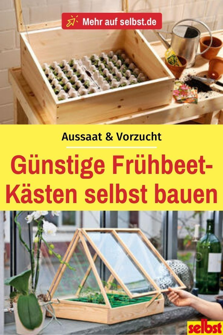 Photo of Build cold frames yourself