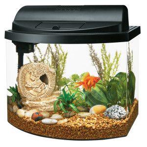 Aqueon goldfish mini bow 5 gallon aquarium starter kit for Bow fish tank