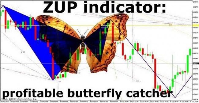 Zup indicator manual