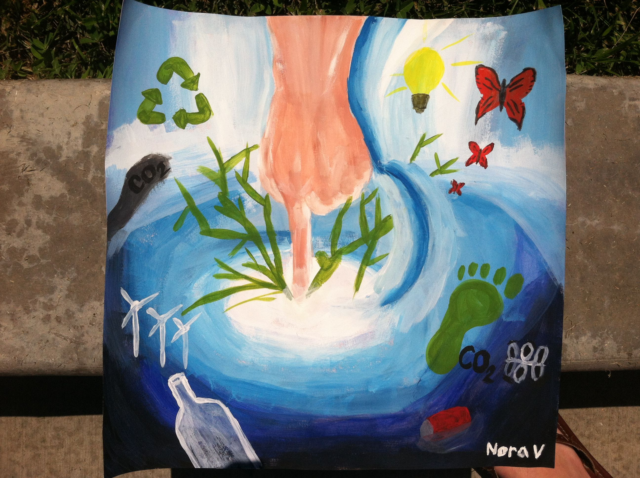 My Reflection Project For Ap Environmental Science