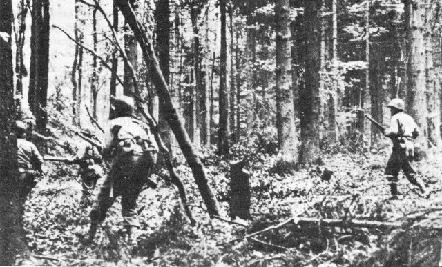 OBJECTIVE: PILLBOXES. Troops of the 110th Infantry, on 2 November, moving through the woods.
