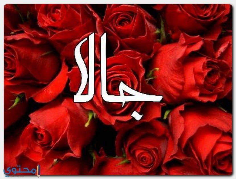 معنى اسم جالا وصفاتها الشخصية Jala معاني الاسماء Jala الاصل في تسمية جالا Neon Signs Flowers Plants