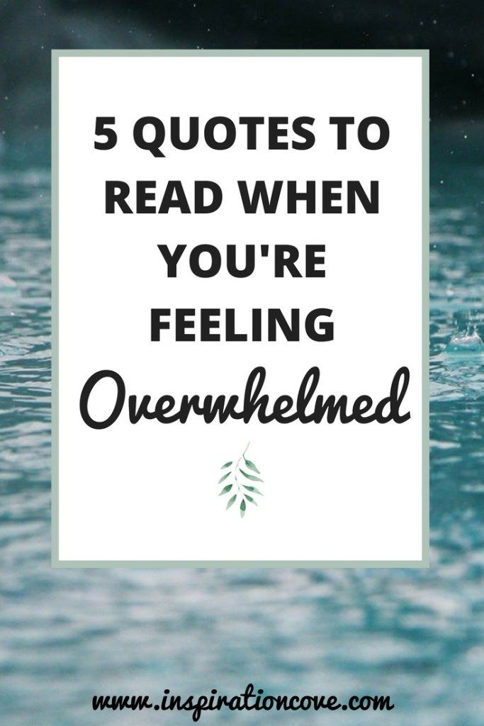 Management Quotes 5 Stress Management Quotes  Quotes To Read When You're Feeling .