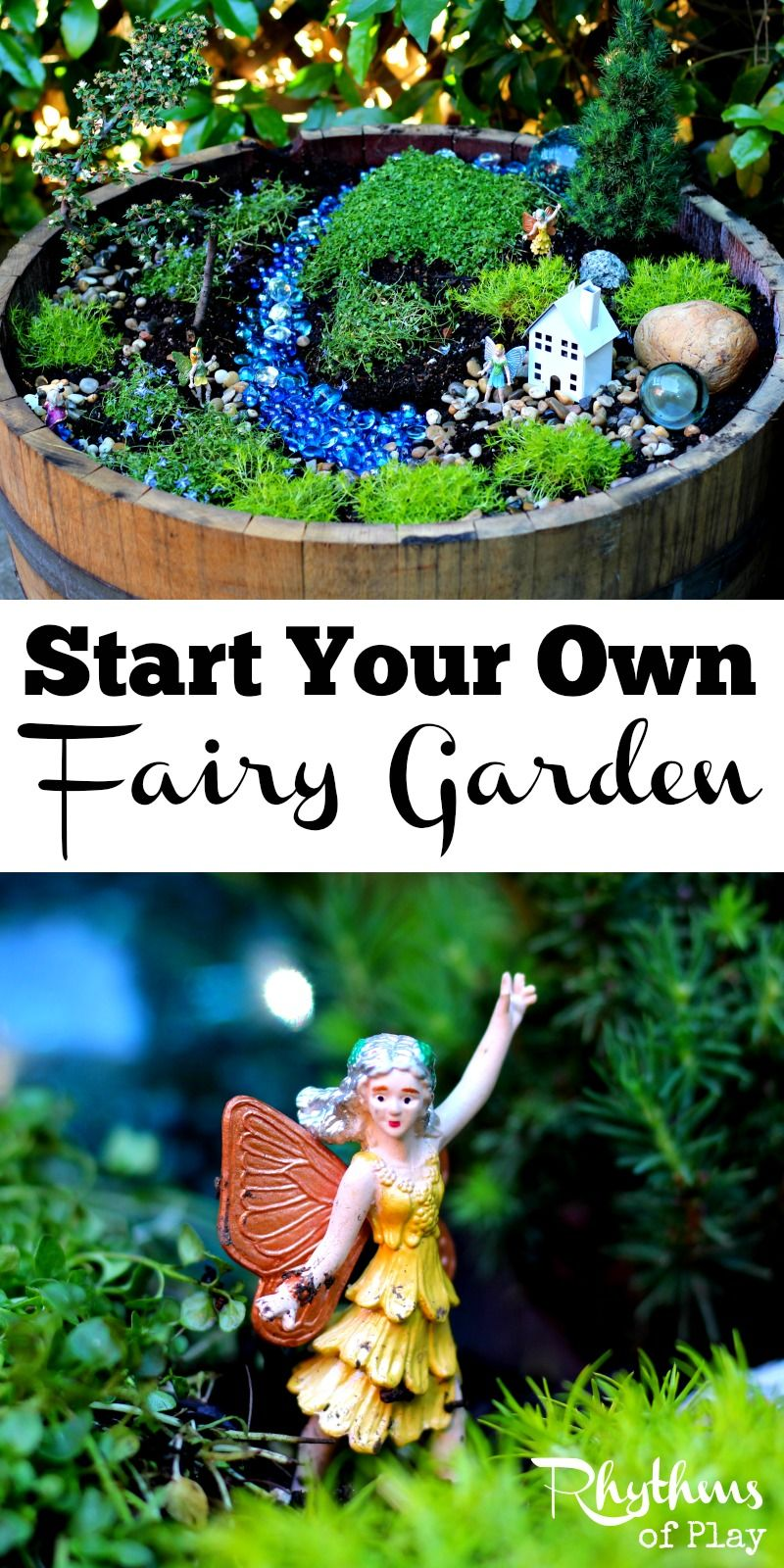 Start Your Own Fairy Garden Gardens Decks and Backyards