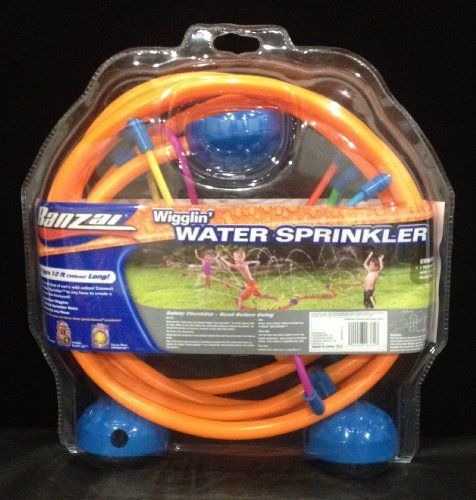 Banzai Wiggling Water Sprinkler Banzai http://www.amazon.com/dp/B000QBR8GW/ref=cm_sw_r_pi_dp_9X.pub1Z3CSP7