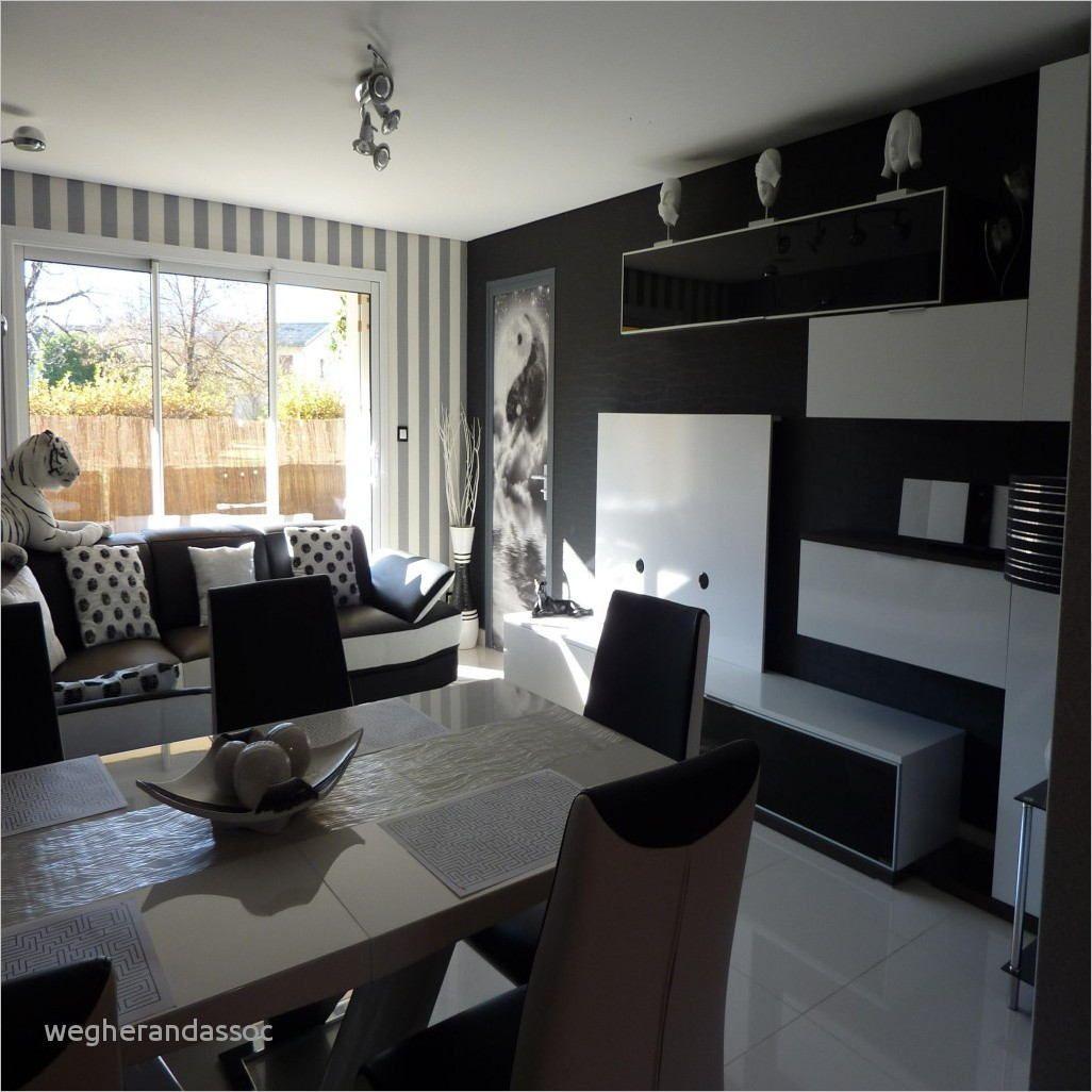 Décoration Salon Moderne Noir Et Blanc deco salon salle a manger cuisine ouverte