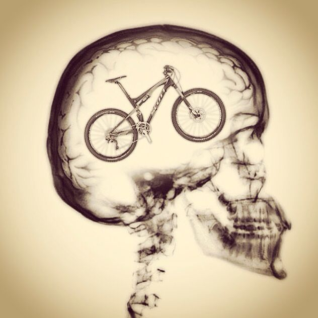 Thought So Commuterchips Bike Brain Xray Bicycle Mtb Fixie