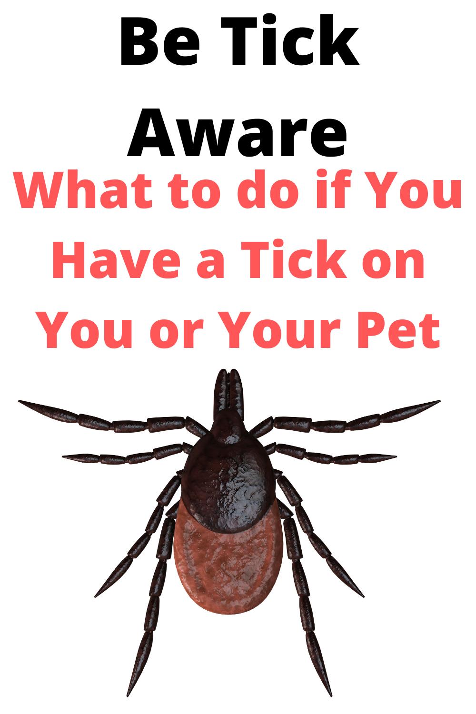 Be Tick Aware In 2020 Ticks Pest Control Awareness