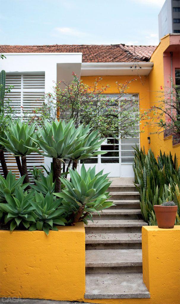 Plantas Que Fazem Bonito Na Entrada De Casa E Na Cal 231 Ada