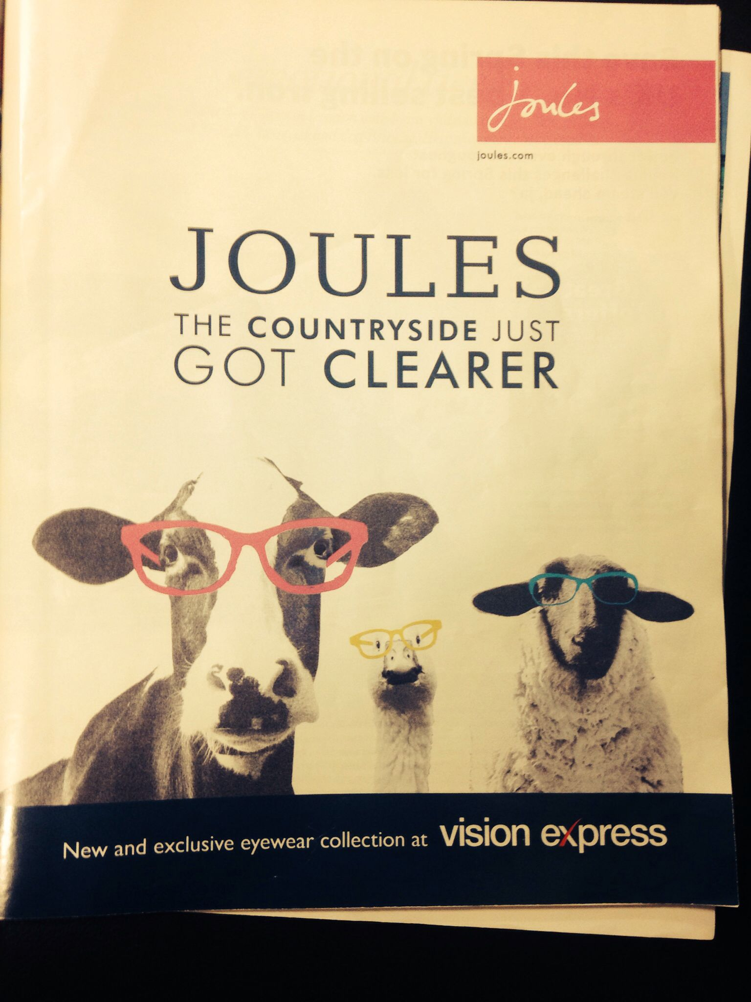 joules advert specsavers advertising