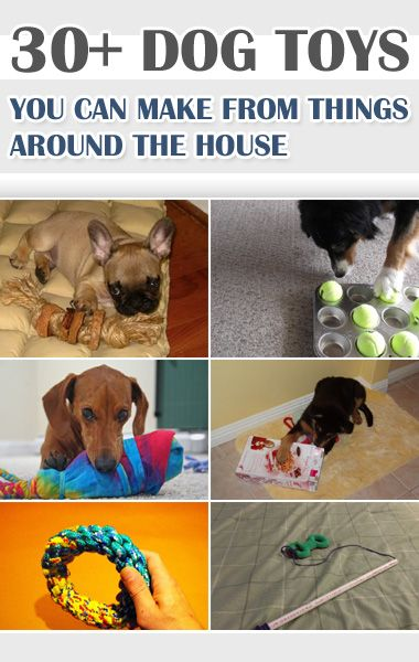 30 Dog Toys You Can Make From Things Around The House Diy Dog