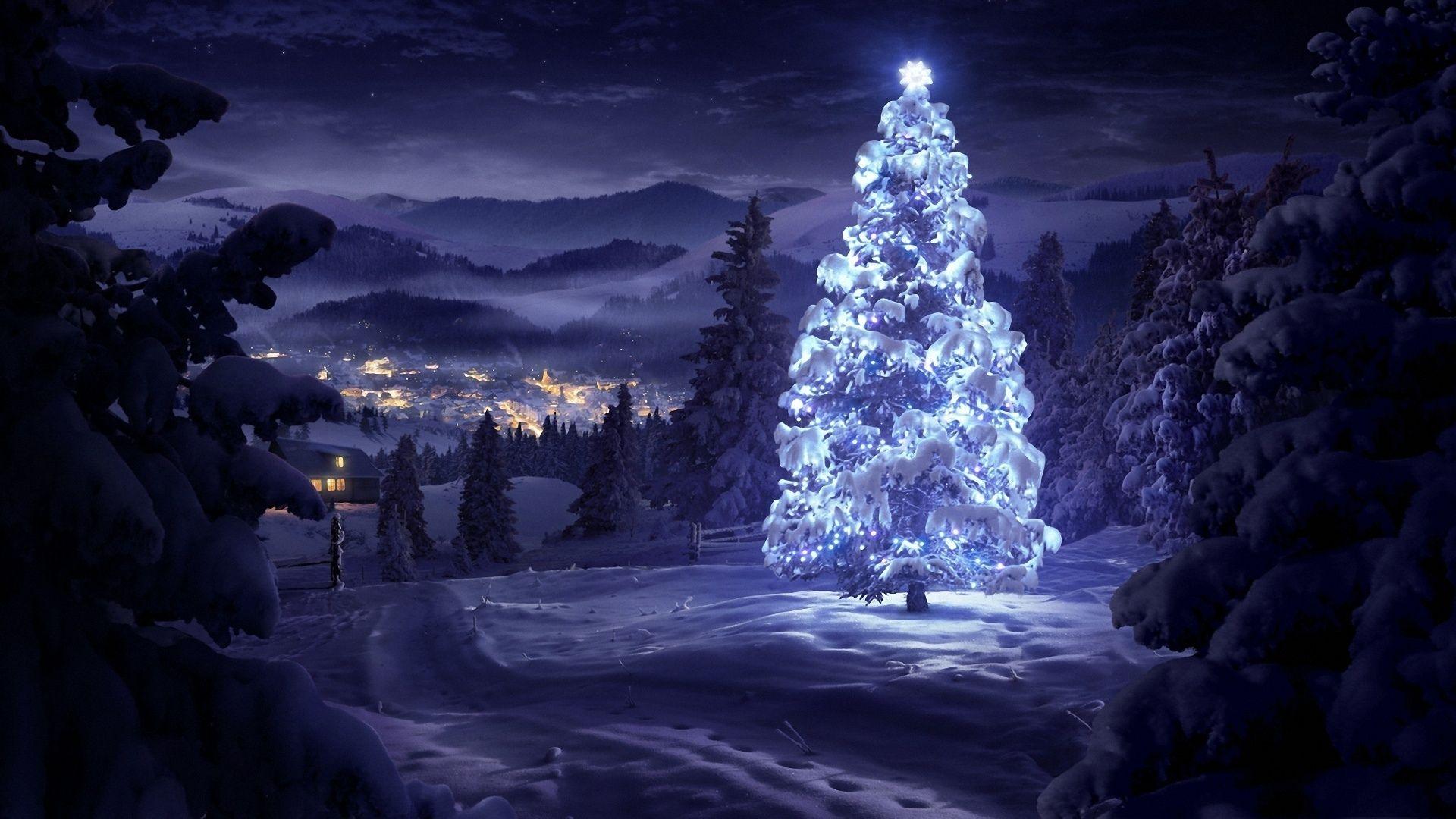 Fond D écran Vacances De Noël: Vacances Noël Village Hiver Paysage Christmas Tree Snow