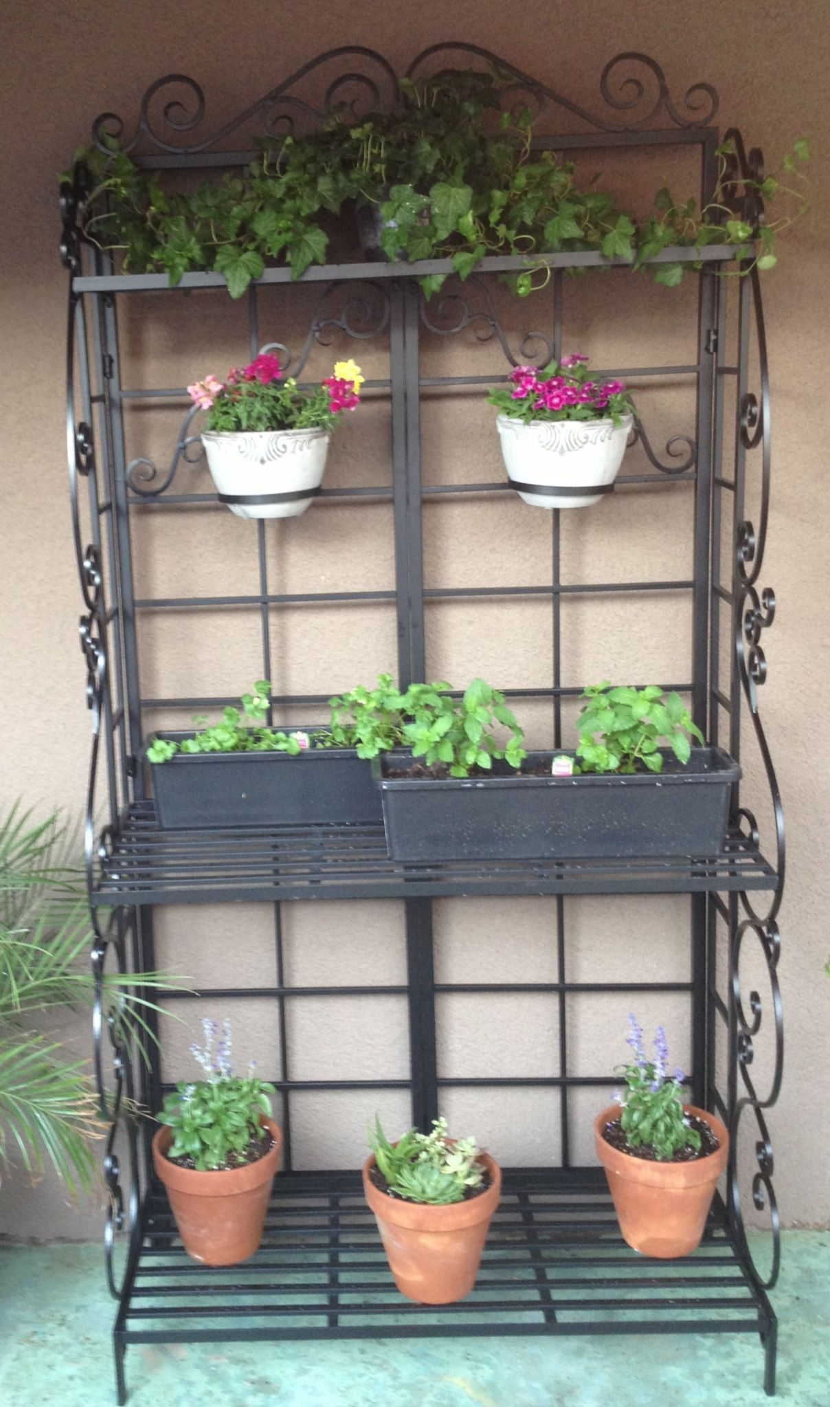 i used a bakers rack as a plant stand