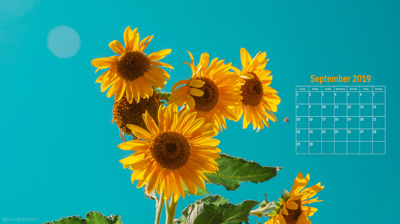 Latest September 2019 Desktop Wallpaper Laptop wallpaper
