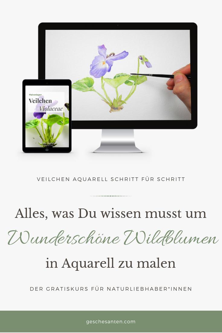Veilchen Viola Malen In Aquarell Lerne Botanische Aquarelle Zu Malen Mit Diesem Schritt Fur Schritt Video Tutorial Einfach Hi Aquarell Skizzenbuch Skizzen