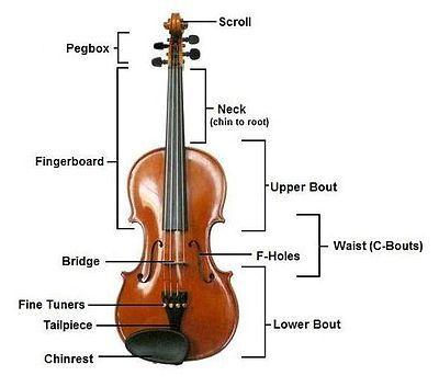 Violin Violin Violin Beginner Violin Lessons