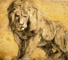 Peter Paul Rubens, Lion study