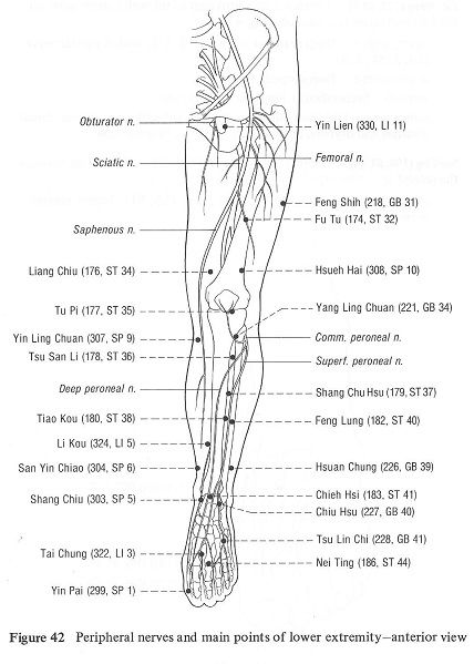 Acupuncture points includes fei yang for acupressure point f5f5ab94fc9d6e6864bc6cc2a161c049g solutioingenieria Gallery