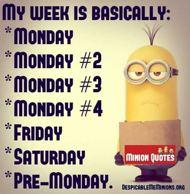 Monday Quotes Funny Funny Minion Monday Quotes And Sayings 8  Monday Quotes