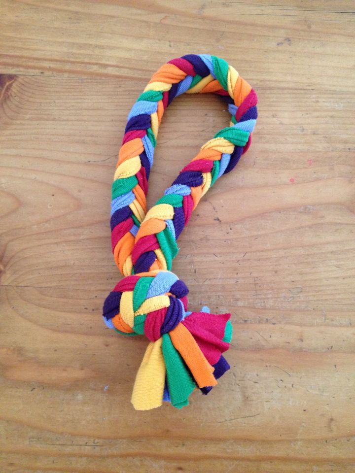 Homemade Dog Toy Made From Knit T Shirt Material Done In A