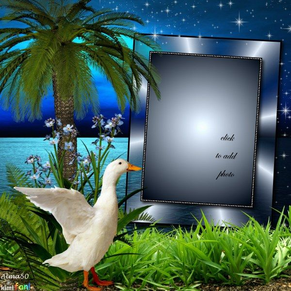 Alma50 S Sunsets Scenery And Nature Frames 2011 June Memories Alma50 Nature Family Picture Frames Photo Frame Frame