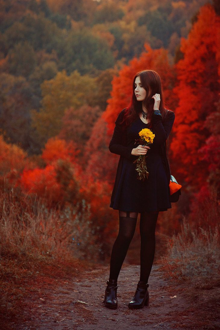 Red autumn by Padera