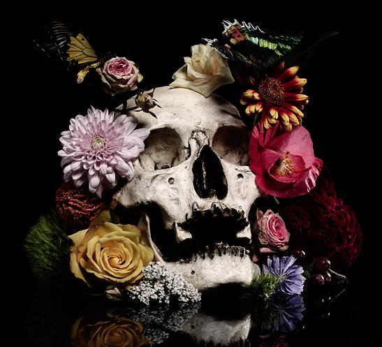 vanité 5 | Art, Skull art, Flower skull