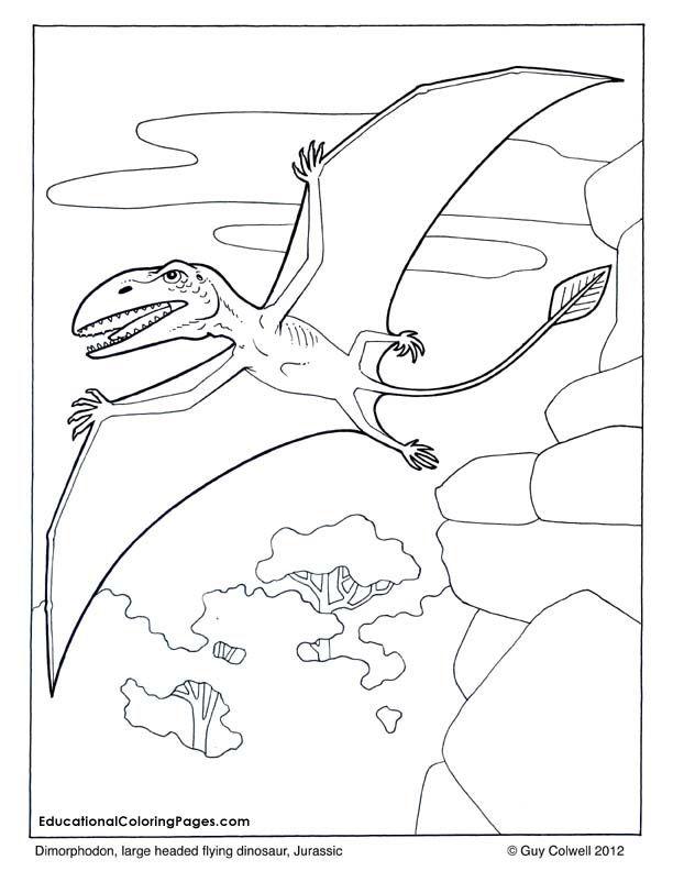 ZOOLOGY-FLYING: Dimorphodon coloring, flying dinosaur