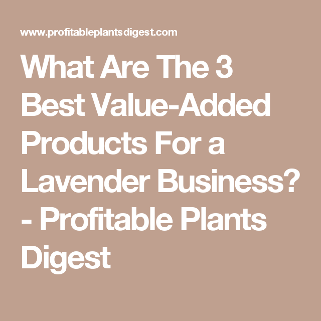 What Are The 3 Best Value Added Products For A Lavender Business Profitable Plants Digest Lavender Specialty Crops Lavender Crafts