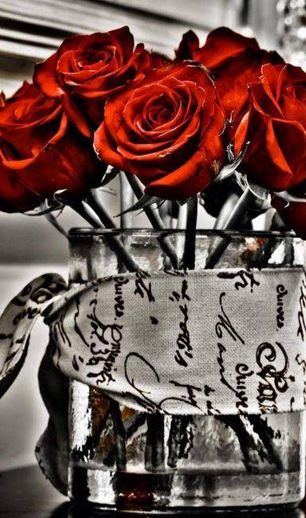 Perfume Dos Sonhos Explosao De Cor Preto Branco Vermelho Rosas