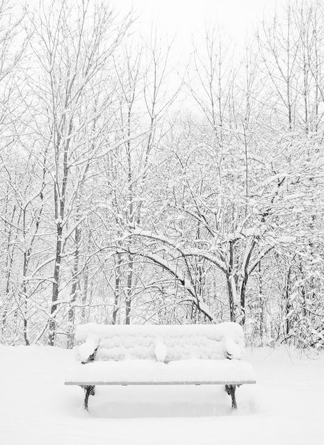 Charming photos of winter scenery winter neige paysage hiver hiver - Paysage enneige dessin ...