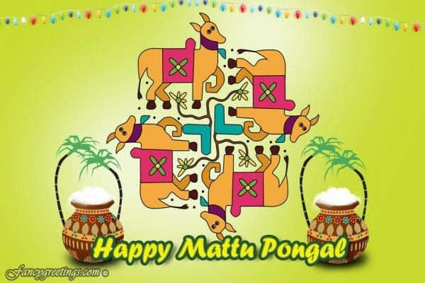 Mattu pongal importance significance images greetings wallpapers mattu pongal importance significance images greetings wallpapers m4hsunfo