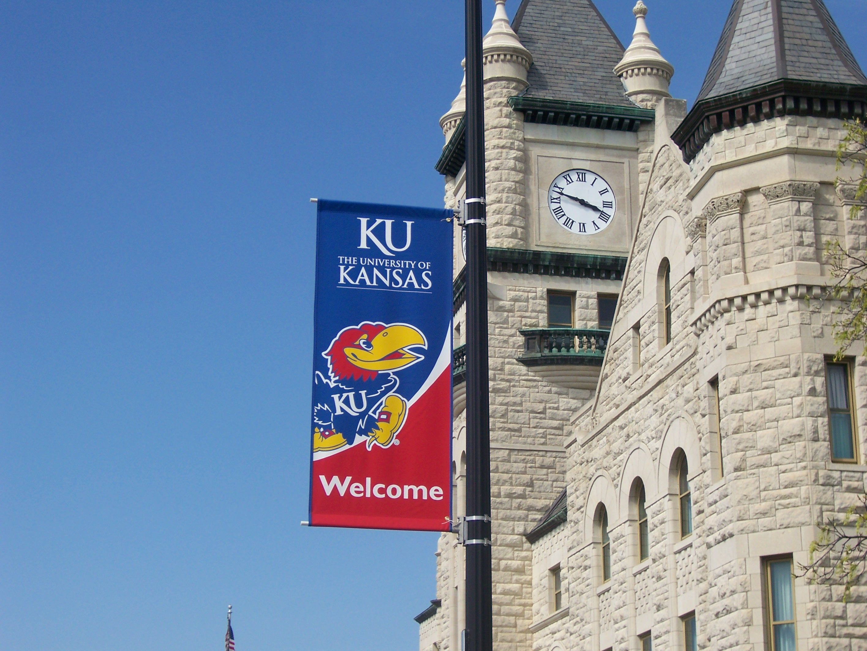 School Pride Rock The Chalk Pole Banners Light Pole Banner