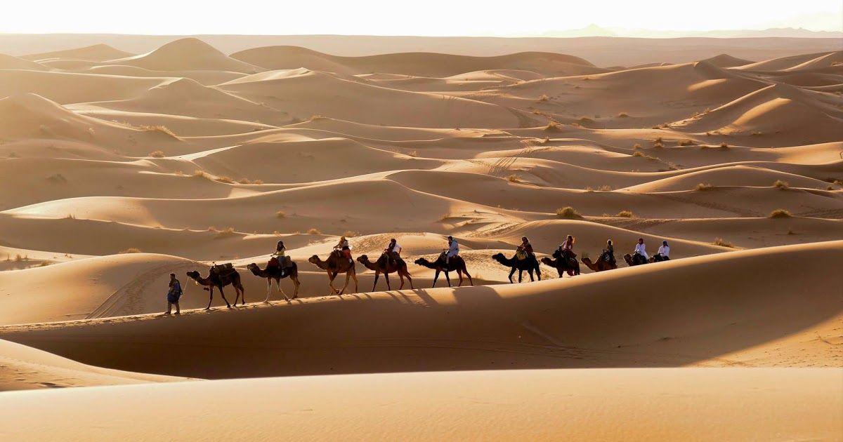 Pemandangan Gurun Sahara Allah Swt Menjadikan Agamanya Sebagai Agama Tauhid Yang Murni Dan Suci Dari Ber Pemandangan Fotografi Pemandangan Matahari Terbenam