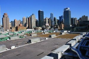 2 4 13 Massive Green Roof Planned For Nyc S Javits Center At 292 000 Square Feet It Will Be The Second Largest Green Roof On Green Roof Roof Plan Roof