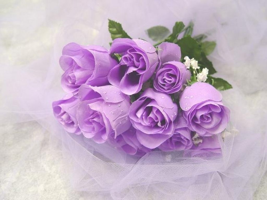 Cool purple glitter graphics good morning beautiful flowers cool purple glitter graphics good morning beautiful flowers friendship quotes friendship pictures bff izmirmasajfo