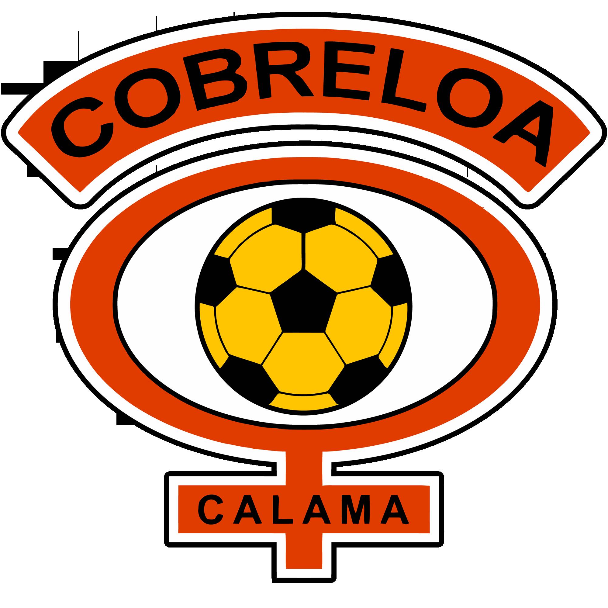 Cobreloa Chilena e28b4150753