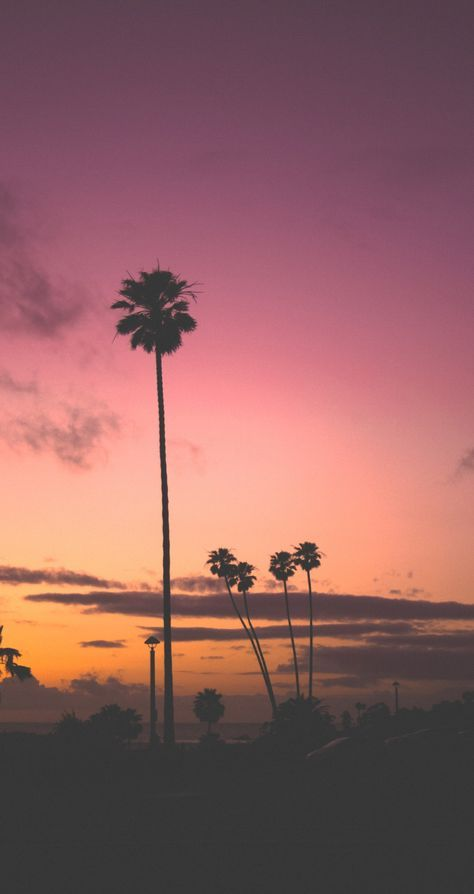 Funny Wallpapers Awesome Iphone Android Wallpapers Scenery California Sunset 7 Plus Wallpaper