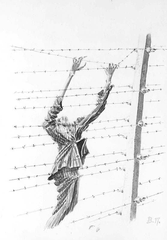 neuengamme concentration camp  death at the electric fence  drawing by v  peltrov  a former